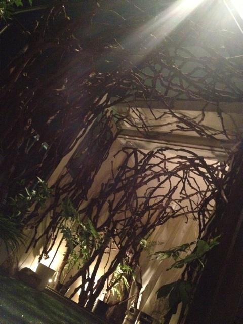樹のアーチ!素敵!
