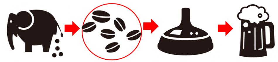 ブラックアイボリー(Black Ivory coffee)の特徴