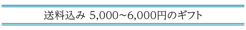 送料込み 5,000〜6,000円の「父の日ギフト」