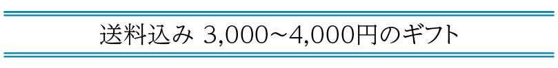 送料込み 3,000〜4,000円の「父の日ギフト」