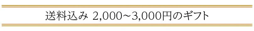 送料込み 2,000〜3,000円の「父の日ギフト」